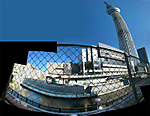 Skytree2