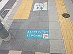 Skytree1200